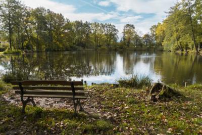 Park Laucha - Sitzgelegenheiten - Blick Richtung Parkteich