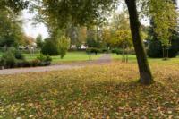 Blick in den Park mit Herbstlaub
